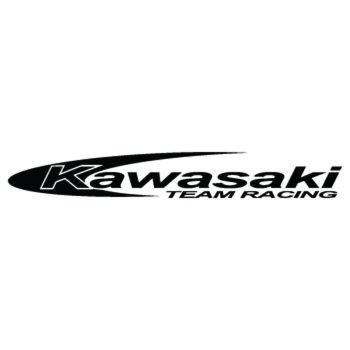 Kawasaki Team Racing Decal