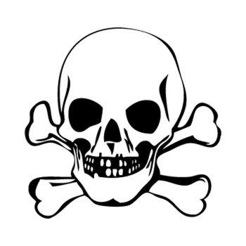 Tee shirt Tête de Mort 2