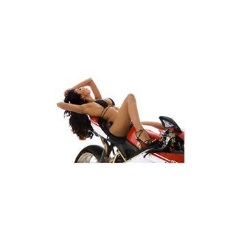 Sticker Déco Femme Sexy Sur Une Moto