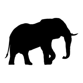 Elephant Safari decal