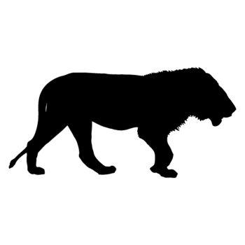 Lion Safari decal