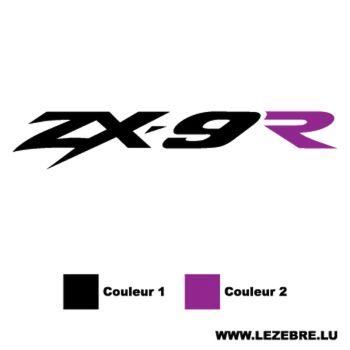Kawasaki ZX-9R Decal