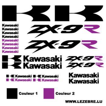 Kawasaki ZX-9R Decals kit 2