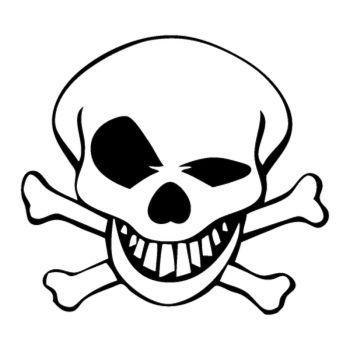 Skull Decal 3