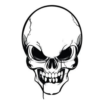 Sweat-Shirt Tête de Mort 4