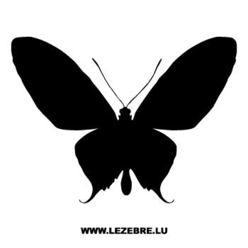 Butterfly Decal 11