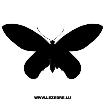 Butterfly Decal 13