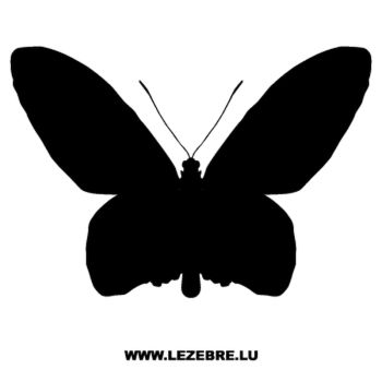 Butterfly Decal 22
