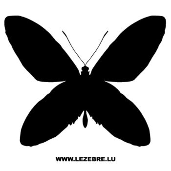 Butterfly Decal 37