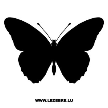 Butterfly Decal 43