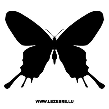 Butterfly Decal 48