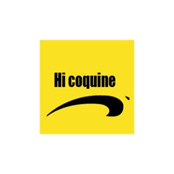 tee shirt Hi coquine by brice de nice