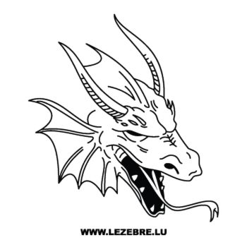 Dragon Face Decal 16