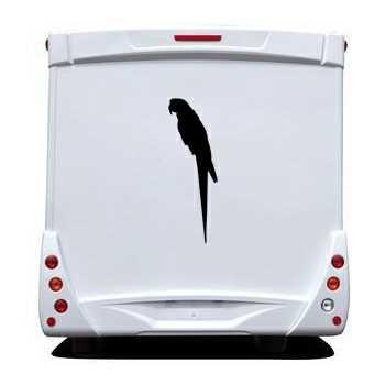 Parrot Camping Car Decal
