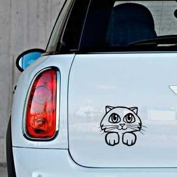 Stickers chat pour Mini