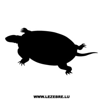 Turtle Decal 4