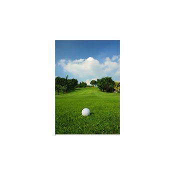 Sticker Déco Balle sur le gazon d'un terrain de golf