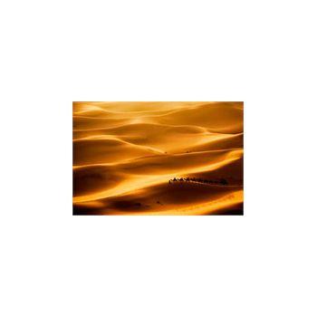 Sticker muraux Caravane Chameaux dromadaire desert