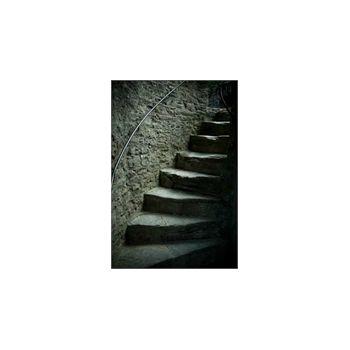 Deco Stickers muraux Escalier ChatEau