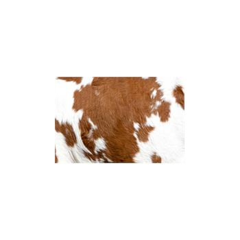 Sticker Deco muraux Peau de vache