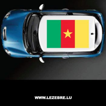 Cameroon flag car roof sticker