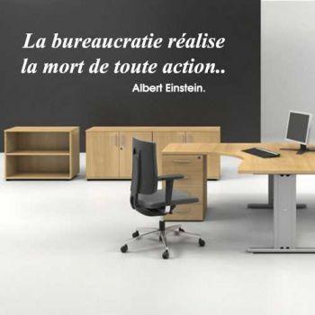 La bureaucratie réalise la mort de toute action. Albert Einstein. Decal