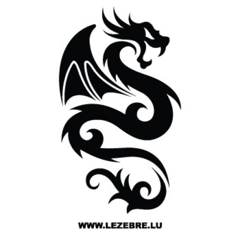 Sweat-Shirt Dragon Ailes 61