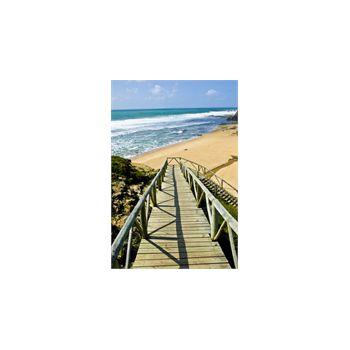 Sticker Déco Chemin en bois vers plage Portugal