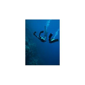 Sticker Deko Plongée sous marine avec un Delphin