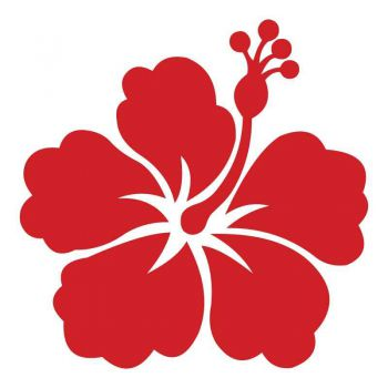 Sticker Fleur Déco HIBISCUS k