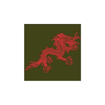 Tee shirt Dragon fun