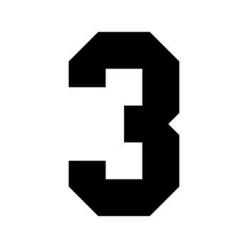 Set of 2 number 3 RAID decals
