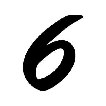 Set of 2 number 6 EVASION decals