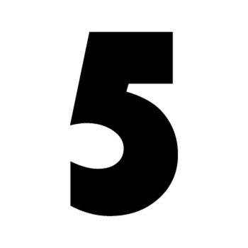 Set of 2 number 5 RAID decals