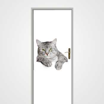 Grey Cat door decal