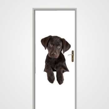 Black Dog door decal