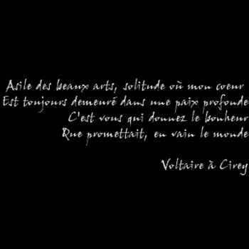 Tee shirt Voltaire Cirey