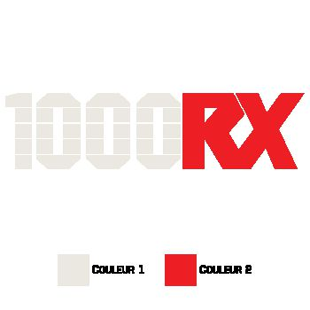 Kawasaki 1000 RX Decal