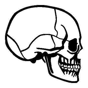 Skull Decal 26