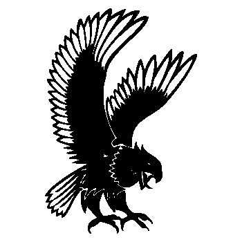 Eagle Attack Decal