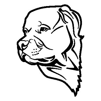 Pit Bull dog Decal