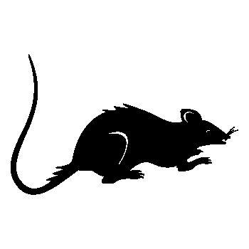 > Sticker Rat