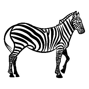 Zebra animal Decal