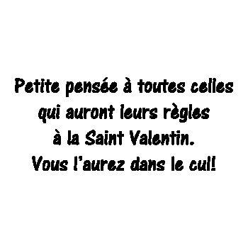 Tee shirt Humour Petite pensée aux Femmes St Valentin