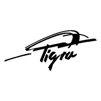 Opel Tigra logo Decal