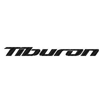 Sticker Carbone Hyundai Tiburon