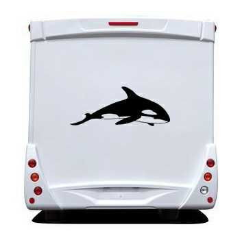 Whale Camping Car Decal