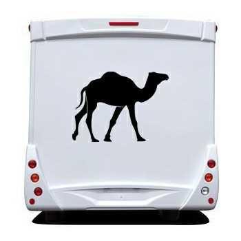 Camel Camping Car Decal