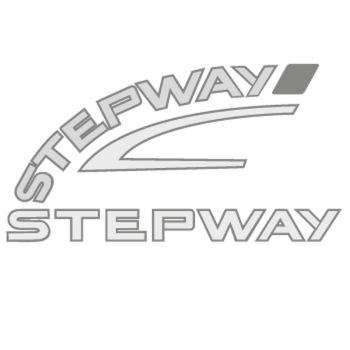Renault Stepway Logo Decal