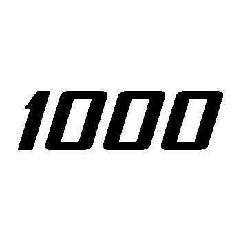 Pochoir Suzuki SV1000